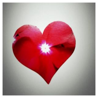 Pull Apart Heart